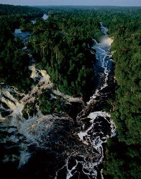Gabon – ultimul paradis