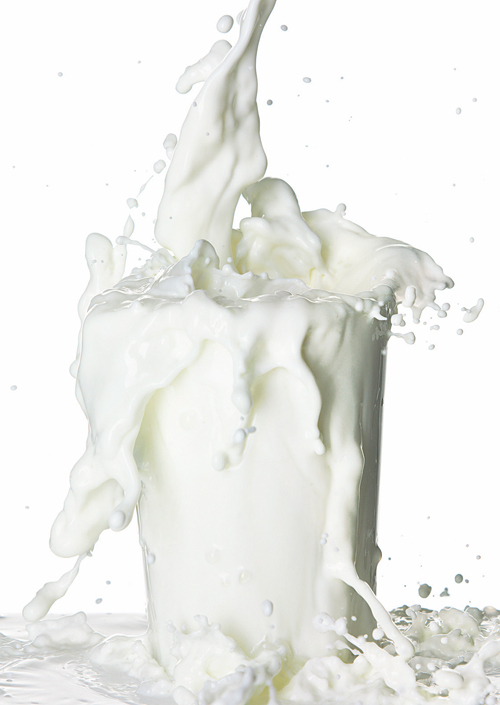 Produsele lactate – benefice sau daunatoare sanatatii?