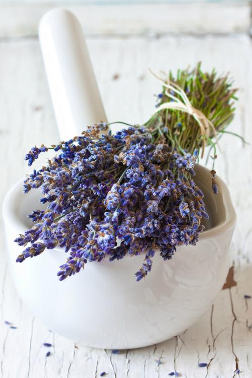 7 plante cu beneficii pentru ten