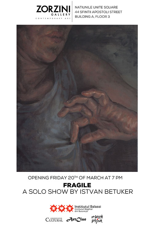 Fragile – solo show Istvan Betuker la Zorzini Gallery