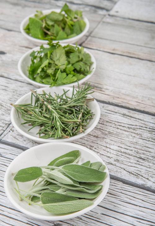 5 plante cu beneficii impresionante pentru sanatatea ta