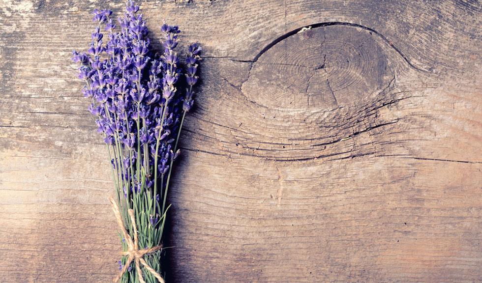 Plante si condimente care te vor ajuta sa fii mai sanatoasa iarna aceasta