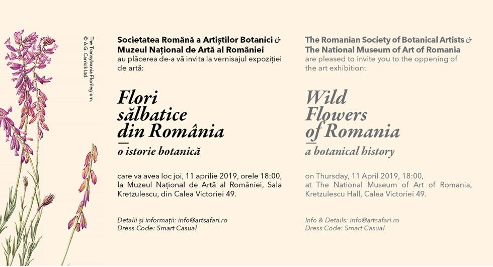 Flori sălbatice din România. O istorie botanică – o expoziție ce nu trebuie ratată