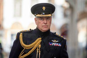 Printul Andrew, Duce de York