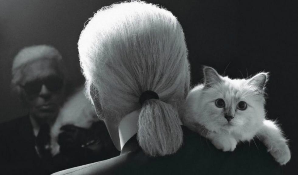Choupette, pisica lui Karl Lagerfeld, îi aduce un omagiu emoționant regretatului designer