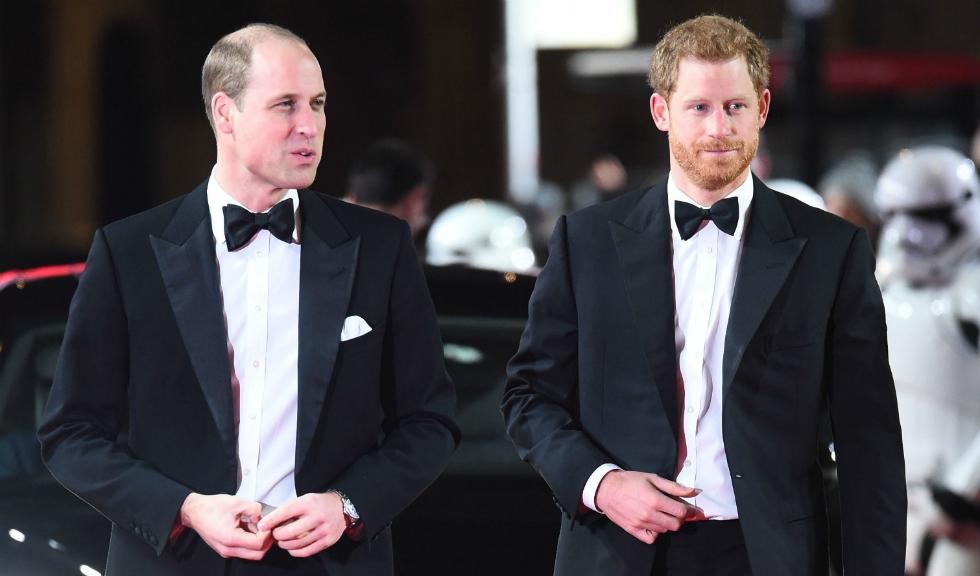 Prințul William și Prințul Harry îi aduc un omagiu Prințesei Diana