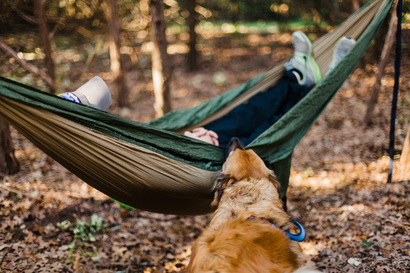 (P) Cum să creezi un spațiu de relaxare în curtea casei tale