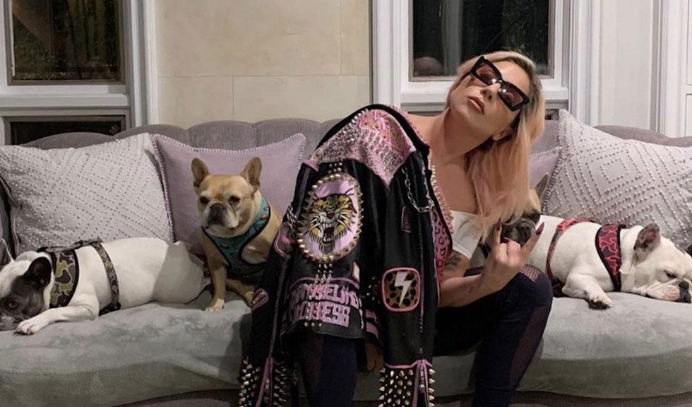 Lady Gaga, PRIMA APARIȚIE în public de când bărbatul care îi plimba câinii a fost împușcat