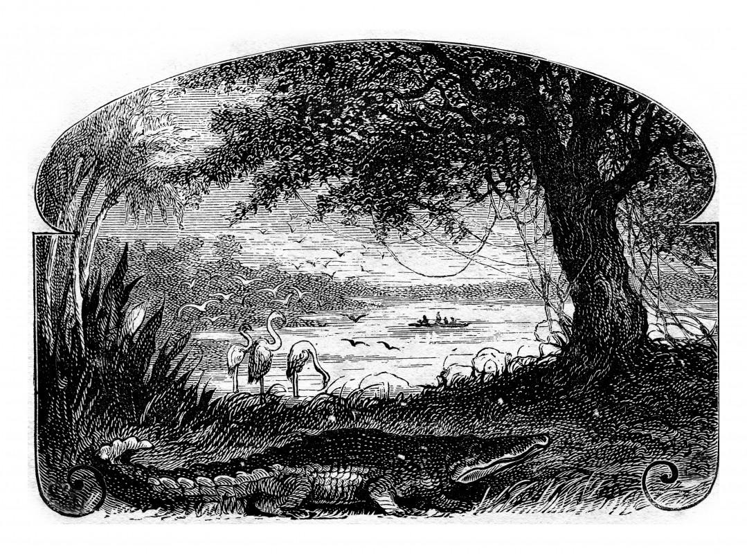 """Urcă la bord alături de Dick, în """"Căpitan la cincisprezece ani"""", din Colecția Jules Verne!"""