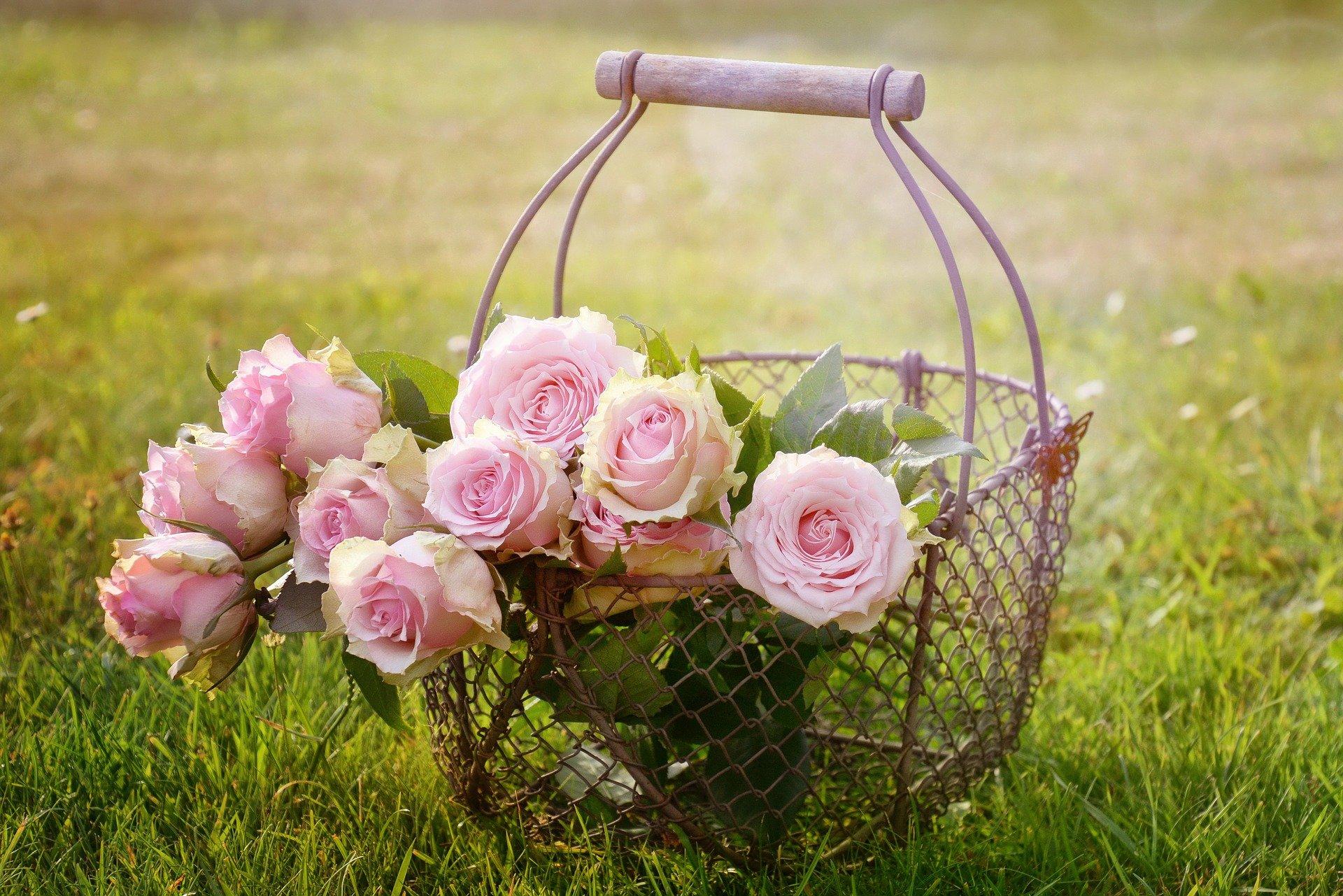 Ce flori sunt potrivite pentru a fi dăruite unei mirese? Maison d'Or este locul în care le găsești pe toate